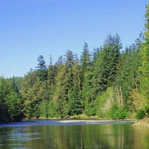 BC TRCR Supports Local Fish Hatchery